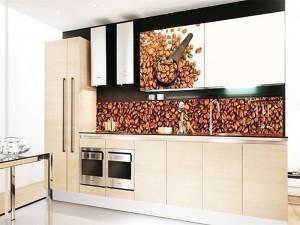 Кухня с фасадом Пластик-045